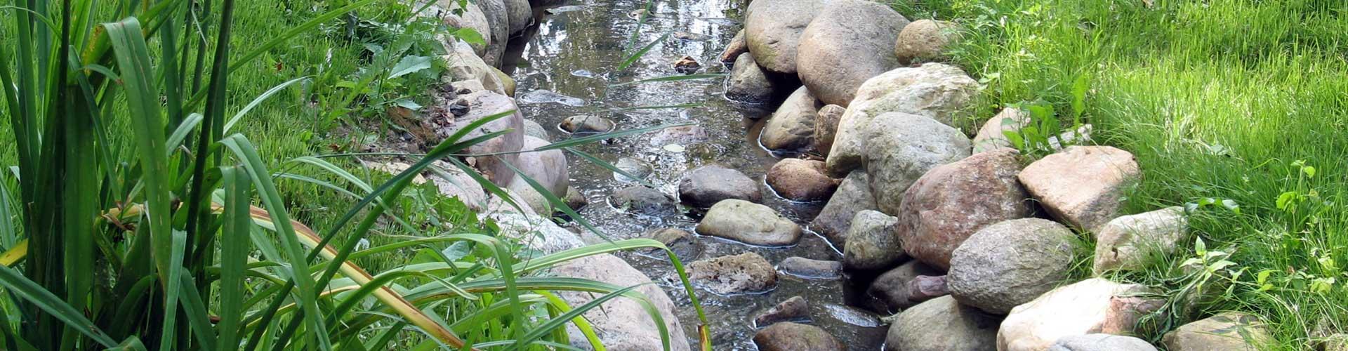 реконструкция пруда и ручья