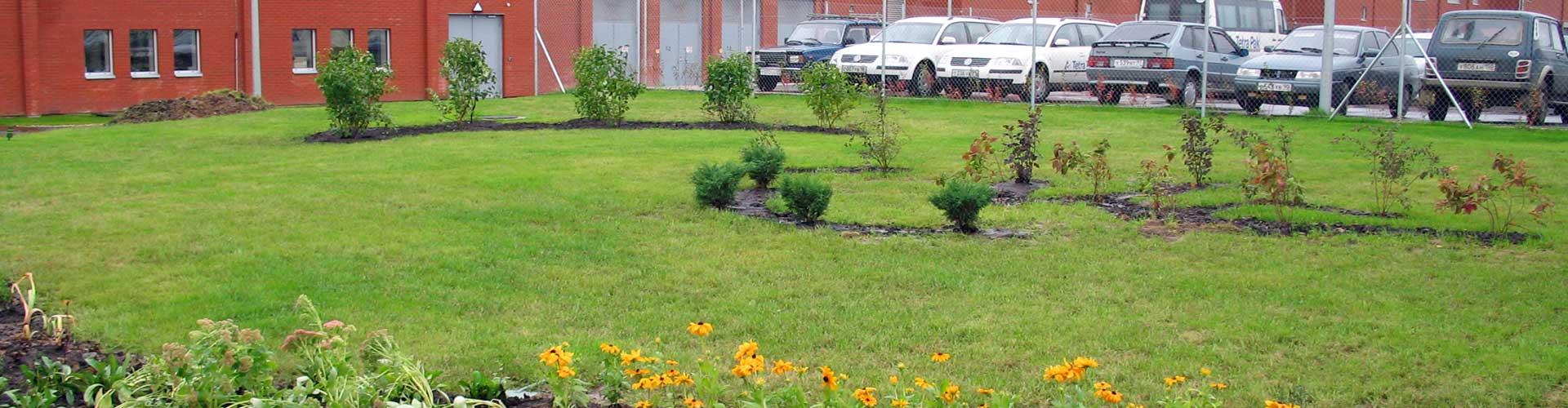озеленение территории (проектирование и реализация)