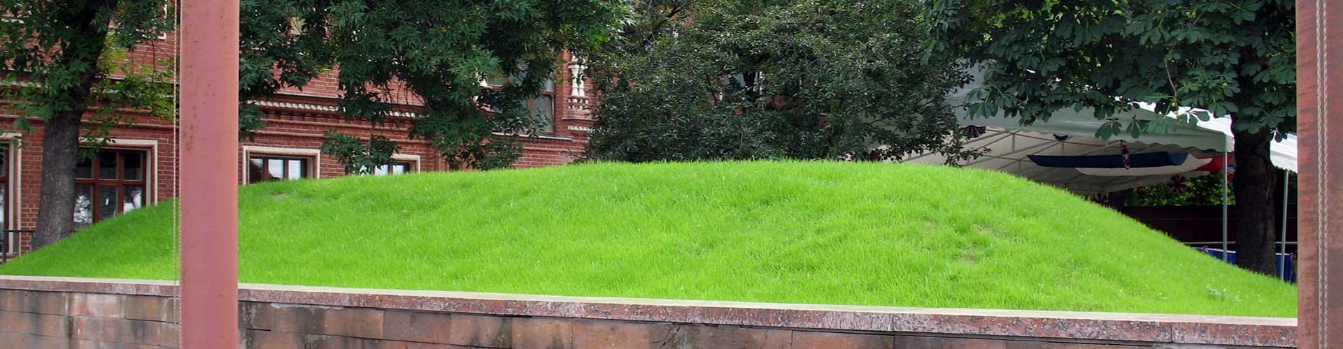 газон (проектирование и реализация)