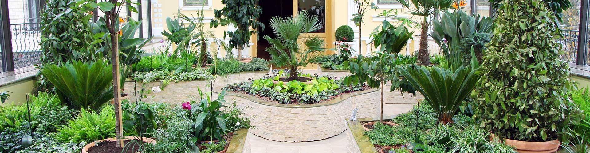 зимний сад (проектирование и реализация)